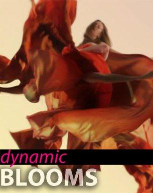 dynamic blooms fashion film