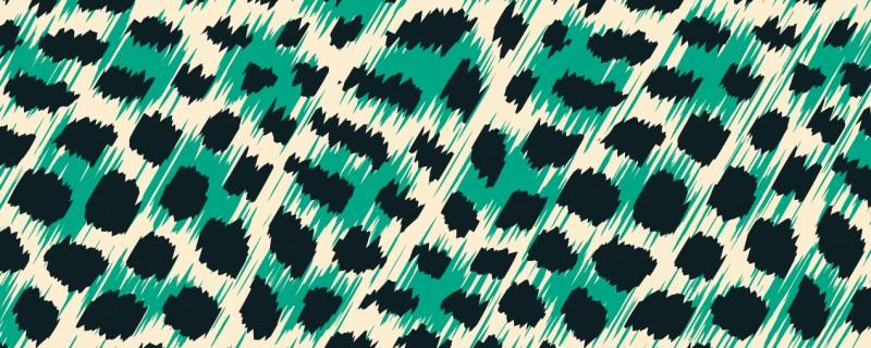 anial print beitragsbild