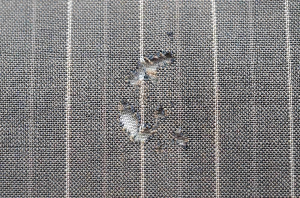 Tschuss Motte Kleidermotten Vorbeugen Bekampfen Ana Alcazar Blog