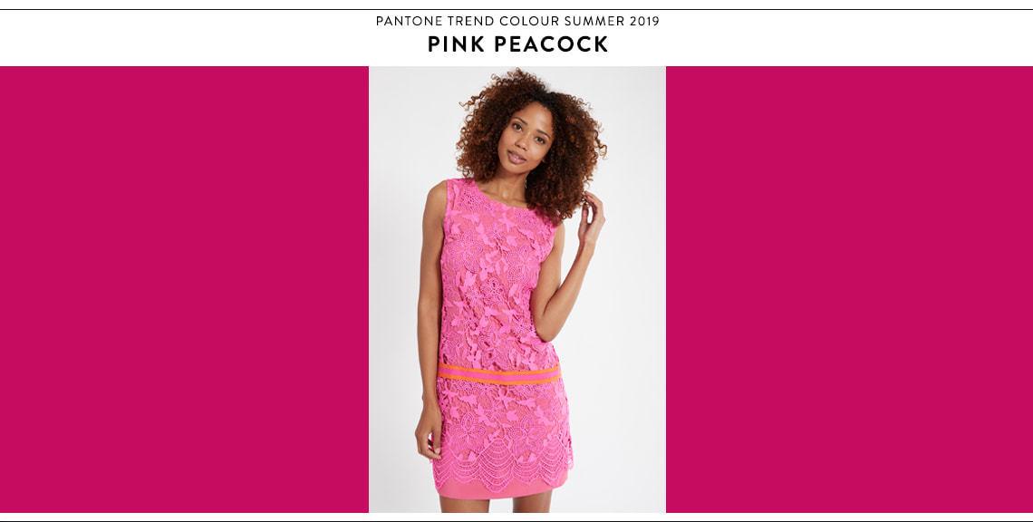 Farbtrend Pink Peacock bei Ana Alcazar