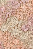 Detailansicht von Pastell Spitzenkleid A-Linie Eterny | Ana Alcazar